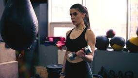 Lengte van een atletisch vrouwelijk brunette die met domoren uitwerken Gezonde levensstijl, geschiktheid Binnen lengte stock videobeelden