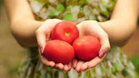 Lengtevrouw die een tomaat dicht tegenhouden 4K stock video