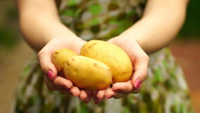 Lengtevrouw die jonge aardappels dicht tegenhouden 4K stock videobeelden