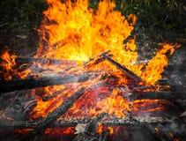 Lenha ardente na fogueira grande Close-up fotografia de stock royalty free