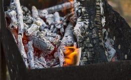 Lenha ardente na grade, carvões, fogo fotos de stock