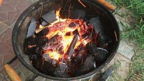 Lenha e carvões, queimando-se brilhantemente no assado vídeos de arquivo