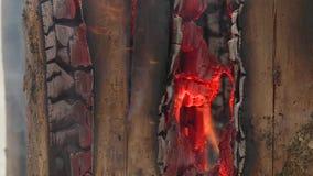 A lenha está queimando-se do interior vídeos de arquivo