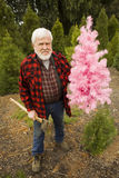 Lenhador com Natal cor-de-rosa e machado Foto de Stock