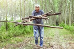 Lenhador fêmea quando tropeçar Foto de Stock Royalty Free
