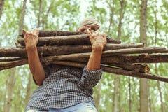 Lenhador fêmea que leva uma pilha de troncos Imagens de Stock Royalty Free