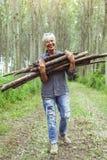 Lenhador fêmea que leva uma pilha de troncos Imagem de Stock