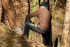 Lenhador idoso no trabalho com serra de cadeia Fotografia de Stock Royalty Free