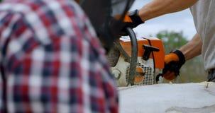 Lenhador que cortam a árvore caída na floresta 4k video estoque