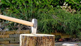 Lenhador que desbasta o movimento lento de madeira vídeos de arquivo