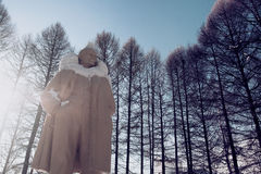 Lenin monument in park under snow Stock Photos