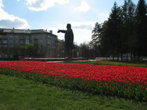 Lenin and tulips Royalty Free Stock Photography