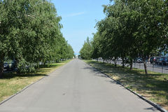 Lenina avenue in Barnaul Royalty Free Stock Photography