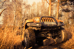 Leningrad oblast , Kirovsky district, Russia , December 25, 2015 , Jeep Wrangler in the forest, the Jeep Wrangler is a compact fou Stock Photography