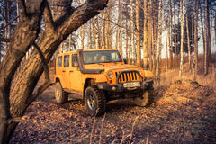 Leningrad oblast , Kirovsky district, Russia , December 25, 2015 , Jeep Wrangler in the forest, the Jeep Wrangler is a compact fou Stock Photos