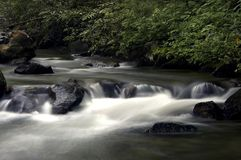 leniwa rzeka Fotografia Royalty Free