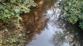 leniwa rzeka Zdjęcia Stock
