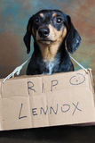 Lennox Rest in Peace Stock Photo
