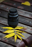 Lens and autumn leaves Royalty Free Stock Photo