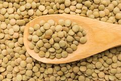 Lentil legume. Grains in wooden spoon. Close up. Royalty Free Stock Image