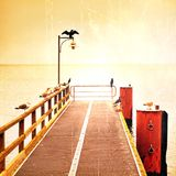 Empty pier in harbor. Steel grate board. Black cormorant sit on lamp.  Autumn mist on pier above sea. Royalty Free Stock Photography