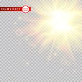 Lens flare light effect. Sun rays with beams isolated on transparent background. Vector illustration. Eps 10 Royalty Free Illustration