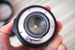 Lens stängde kronblad av membranen Royaltyfri Fotografi