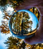 The Lensball Captures an Autumn Glow of a Small Stand of Deciduous Trees. A lensball produces an image of a small stand of deciduous trees before they shed their stock photo