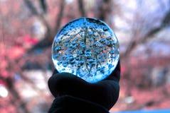 Lensball gry zdjęcie royalty free