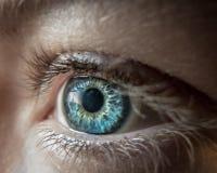 Lense för blått öga Arkivfoto