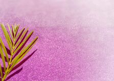 Free Lent Season,Holy Week And Good Friday Concepts - Image Of Palm Leave In Purple Vintage Background Stock Image - 169451291