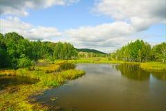 Lentamente o rio atual no outono adiantado fotografia de stock