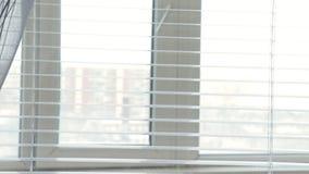 Lentamente resbalando en la ventana con las persianas y fijando en las plantas verdes en el travesaño de la ventana, introducción metrajes
