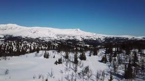 Lentamente voando acima das árvores e da grande paisagem do inverno da montanha vídeos de arquivo
