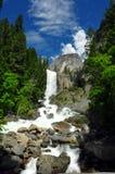 Lente Dalingen en Halve Koepel. Yosemite NP, CA Stock Afbeelding
