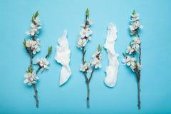 Lente en de zomer die, wit vegen gebruikt de bloeien af Allergie en lopende neus, concept stock foto's