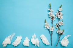 Lente en de zomer die, wit vegen gebruikt de bloeien af Allergie en lopende neus, concept Exemplaarruimte voor tekst stock fotografie