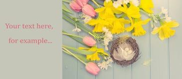 Lente gekleurde bloemen met de decoratie van het vogel` s nest Stock Afbeelding