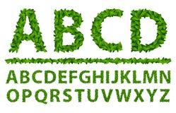 Lente van alfabet de seizoengebonden bladeren Stock Fotografie