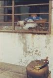 Lente Zuiko di normale di olympus 50mm di filmphotography di Hangzhou Zhejiang della porcellana di stile di vita Fotografie Stock