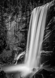 Lentedaling, Yosemite Royalty-vrije Stock Afbeelding