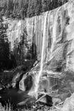 Lentedalingen bij het Nationale Park van Yosemite in Californië stock foto's