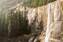 Lentedalingen bij het Nationale Park van Yosemite in Californië royalty-vrije stock fotografie