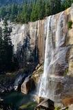 Lentedalingen bij het Nationale Park van Yosemite in Californië royalty-vrije stock foto