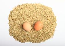 Lentejas con los huevos Foto de archivo libre de regalías