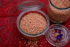 Lentejas rojas secadas imagen de archivo libre de regalías
