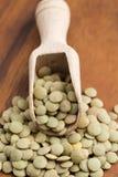Lentejas verdes orgánicas secas Imagen de archivo