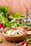 Lenten spring vegetable salad of cucumber, radish, greens. And sunflower oil in a plate on a wooden table Royalty Free Stock Photos
