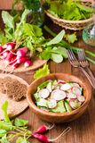 Lenten spring vegetable salad of cucumber, radish, greens. And sunflower oil in a plate on a wooden table Royalty Free Stock Images