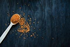 Lenticchie arancio in un cucchiaio Su un fondo di legno scuro Vista da sopra Copi lo spazio Posto per testo fotografie stock libere da diritti